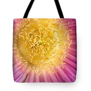 Lions Fingers Tote Bag