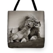 Lions In Freedom Tote Bag