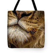 Lions Mouth 2 Tote Bag