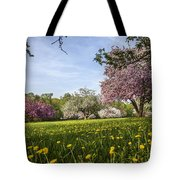 Lions Of The Lawn Tote Bag
