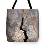 Lions Tail Carlsbad Caverns National Park Tote Bag