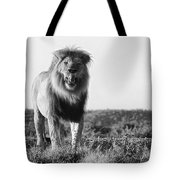 Lip Lickin Good B And W Tote Bag