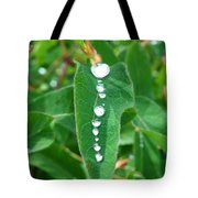 Liquid Lineup Tote Bag