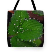 Liquid Pearls On Strawberry Leaves Tote Bag