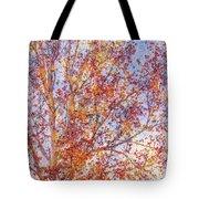 Liquidambar Square Abstract Tote Bag