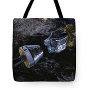 Lisa Pathfinder Tote Bag