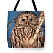 Lit Up Owl Tote Bag