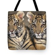 Little Angels Bengal Tigers Endangered Wildlife Rescue Tote Bag