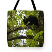 Little Bear Cub In Tree Cades Cove Tote Bag
