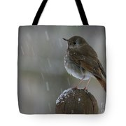 Little Bird Loving The Snow Tote Bag