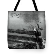 Little Bird On A Bench Tote Bag