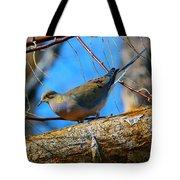 Little Birdie 2 Tote Bag
