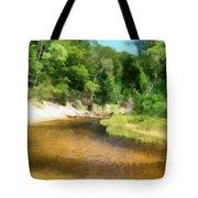 Little Black Creek - Hoffmaster State Park Tote Bag
