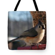 Little Gray Crested Titmouse Bird Ready For Lunch Tote Bag