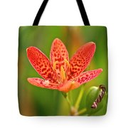 Little Blackberry Lilly Tote Bag