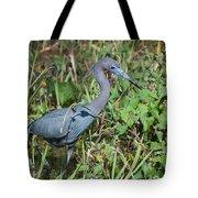 Little Blue Heron 2 Tote Bag