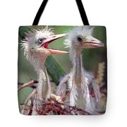 Little Blue Heron Egretta Caerulea Tote Bag