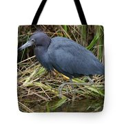 Little Blue Heron Hunting Tote Bag
