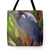 Little Blue Heron Male In Breeding Tote Bag