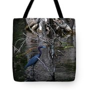 Little Blue Heron Tote Bag by Skip Willits