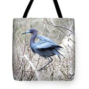 Little Blue In Rookery Louisiana Tote Bag