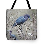 Little Blue Lake Martin Louisiana Tote Bag