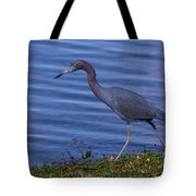 Little Blue Strut Tote Bag