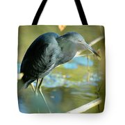 Little Blue View Tote Bag