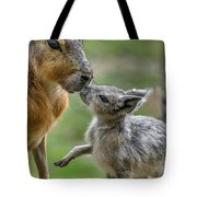 Little Cavy With Mother Tote Bag