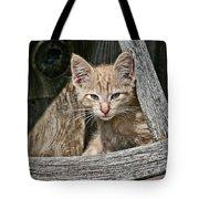 Little Charlie - Kitten By Wagon Wheel - Casper Wyoming Tote Bag