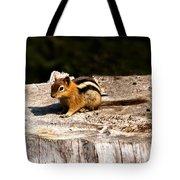 Little Chipmunk Tote Bag