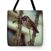 Little Costa's Hummingbird Tote Bag