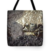 Little Crab Tote Bag