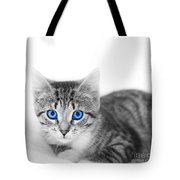Little Cute Kitten. Space For Your Text Tote Bag