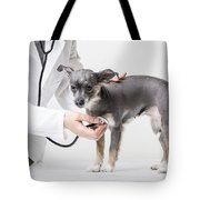 Little Dog At The Vet Tote Bag