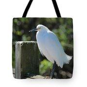 Little Egret On The Boardwalk Tote Bag