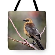 Little Grackle In A Big World Tote Bag