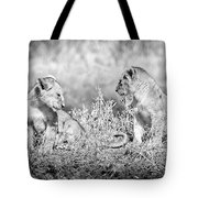 Little Lion Cub Brothers Tote Bag
