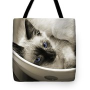 Little Miss Blue Eyes B W Tote Bag by Andee Design