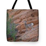 Little Big Horn Tote Bag
