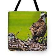 Little Osprey Tote Bag