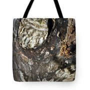 Little Owl 3 Tote Bag