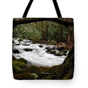 Little Pigeon River In The Smokies Tote Bag