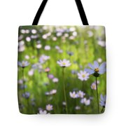 Little Pink Daisies  Tote Bag