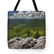 Little Pinnacle Grayson Highlands Va Tote Bag