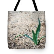 Little Plant Tote Bag