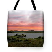Little Pond Near The Ocean Panorama Tote Bag