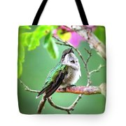 Little Ruby - 6763-001 Tote Bag