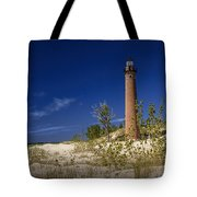 Little Sable Point Light No.0285 Tote Bag