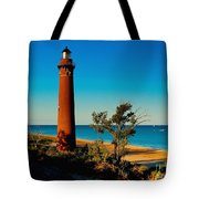 Little Sable Point Tote Bag